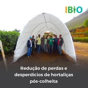 IBIO - Desperdício