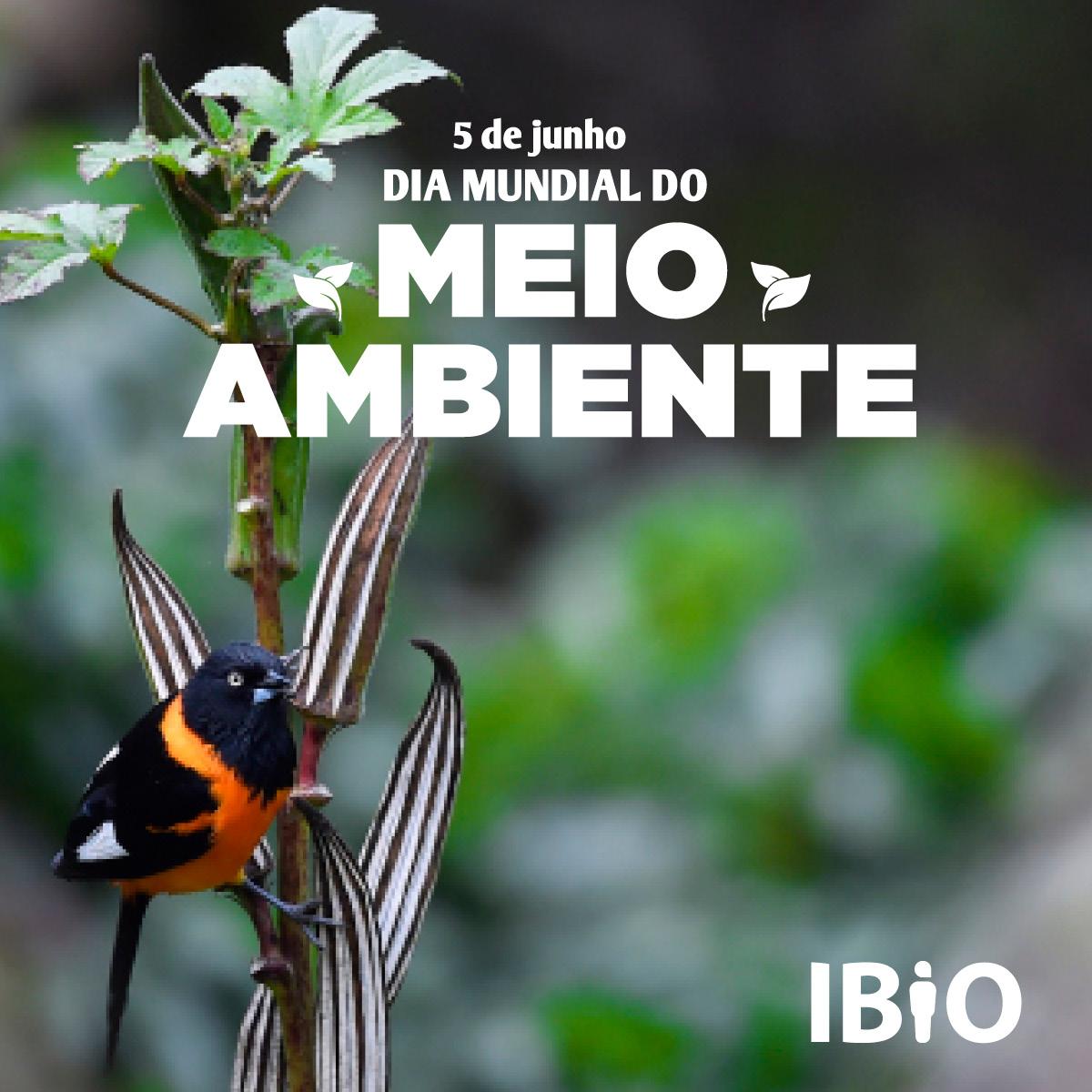 ibio_post_diadomeioambiente